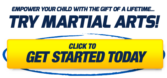 Try Martial Arts Today!